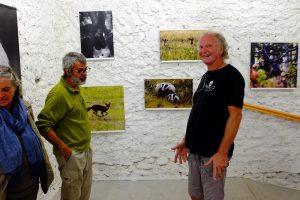 photos animalières drôme jjbertin.fr 2019 exposition la ronde des arts 2017 saint hilaire du rosier