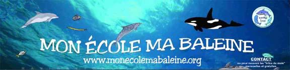 mon ecole ma baleine