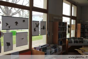 photos animalières drôme jjbertin.fr mars 2020 exposition bibliothèque Peyrins