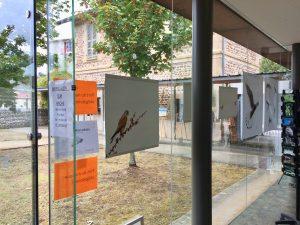 photos animalières drôme jjbertin.fr Août 2020 exposition ROYBON 38940