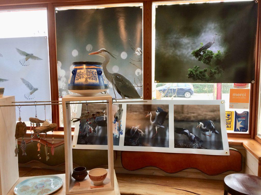 photos animalières drôme jjbertin.fr Fevrier / Mars 2021 exposition boulangerie Jacopain Saint Thomas en Royans 26190